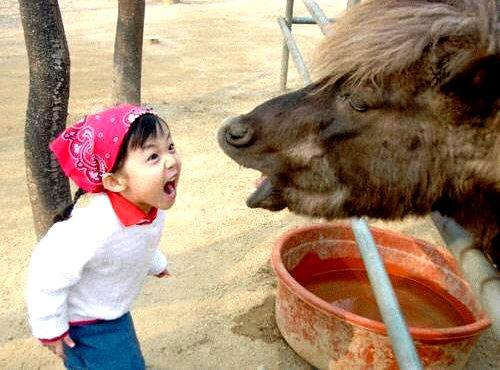 http://www.bezumnoe.ru/fun/aaaaaaaaaa.jpg